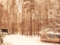 Kerr Lake, NC