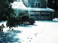 Snow, Yorktown VA